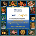 Small version of the FruitScapes free poster