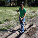 UF student prepares plot for seedlings