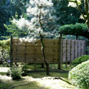 Bamboo fence in Japanese garden