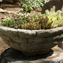 Hypertufa planter with succulents