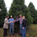 People standing in front of Christmas trees