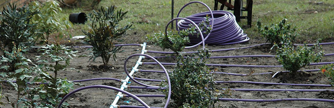 Netaform irrigation system