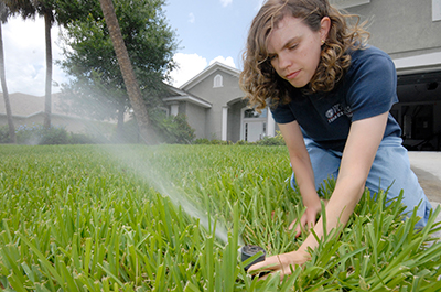 UF/IFAS faculty adjusting irrigation head in a St. Augustinegrass lawn