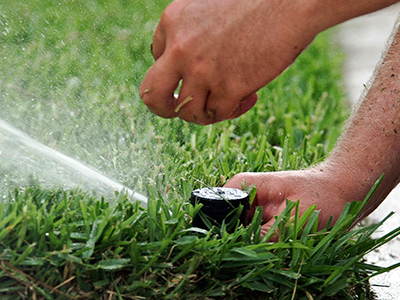 Irrigation System Maintenance - Gardening Solutions - University of  Florida, Institute of Food and Agricultural Sciences