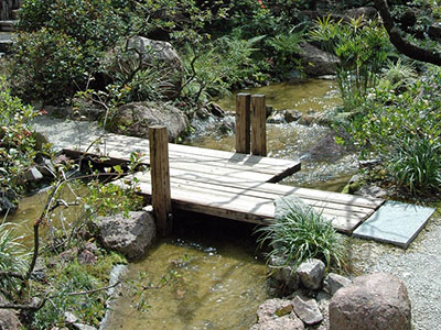 Water Gardens - Gardening Solutions - University of Florida ... on fencing for small backyards, fences for small backyards, landscaping design for small backyards, tips for small backyards, container gardening for small backyards, landscape plans for small backyards, patio furniture for small backyards, pools for small backyards, concrete for small backyards, flower gardens for small backyards, landscape design for small backyards, decks for small backyards,