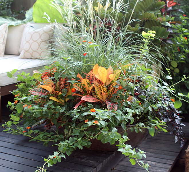 Add A Thrilling Porch Planter For Fall Gardening Solutions