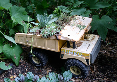 A succulent planted in a toy truck