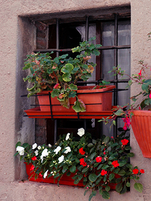 A window with two levels of window boxes that are terra cotta colored and fill with impatiens and geraniums
