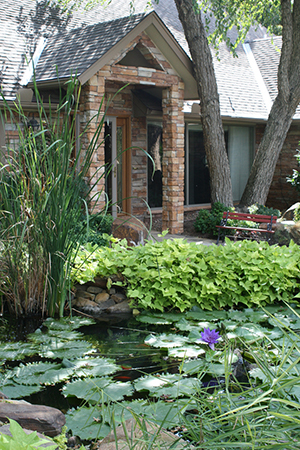 entryway to home as seen from its shady plant-filled water garden