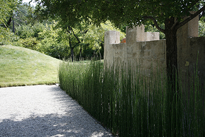 An austere gravel path with a horsetail grass border along a plain concrete wall