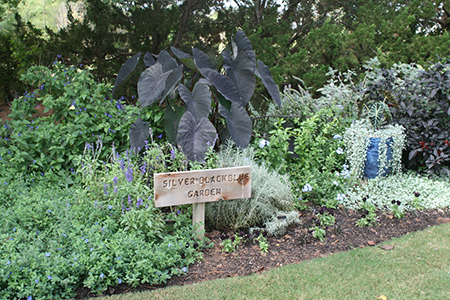 A garden bed with different plants with foliage or flowers that are blue, silver, and almost purple with a sign reading Silver, Black, Blue Garden