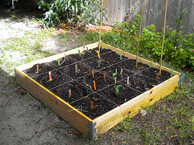 square foot gardening square foot gardening gardening solutions 29212