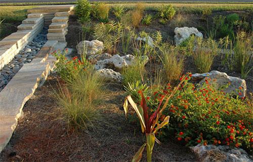 Stormwater Runoff - Gardening Solutions - University of ...