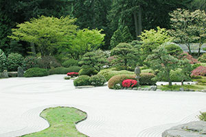 ten important things to consider when planning your landscape design