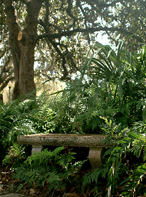 Heavy Duty Counter Stools, Landscaping In The Shade Gardening Solutions University Of Florida Institute Of Food And Agricultural Sciences