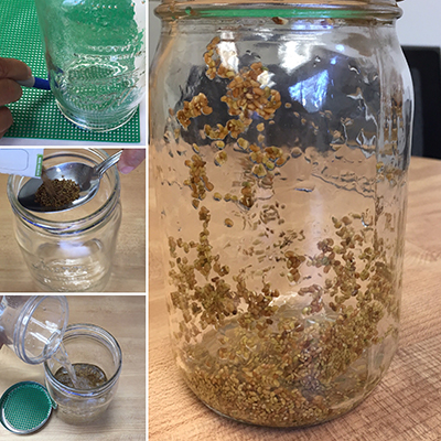 four combined photos of the glass jar being filled with seeds