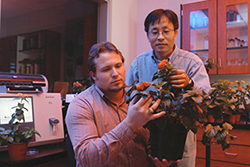Two men look at a flowering lantana plant in a lab