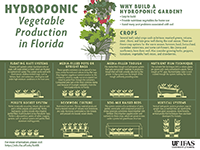 A graphic extoling the virtues of hydroponic gardening