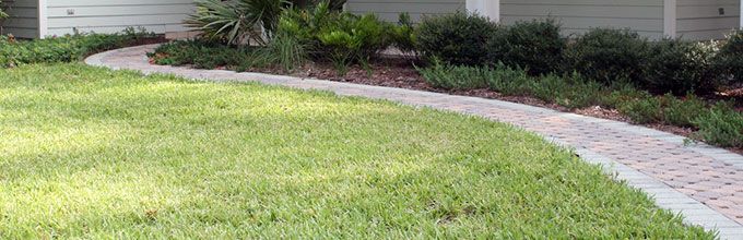 A Florida-Friendly lawn with turfgrass