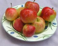 TropicSweet apples
