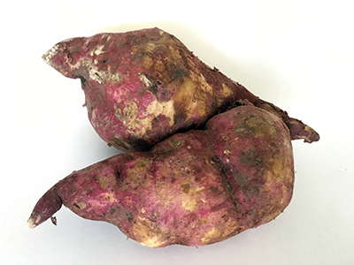 Two boniato tubers with red skin