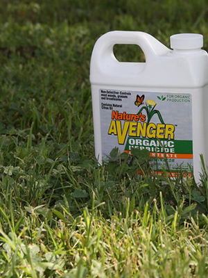 White plastic bottle of organic herbicide sitting on grass