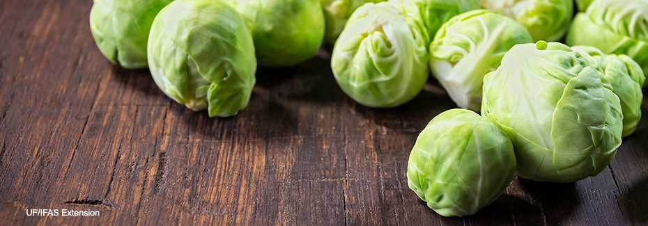 Several Brussels sprouts on a dark wooden surface