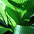 Detail of a palm plant, green leaves with sun shining on them
