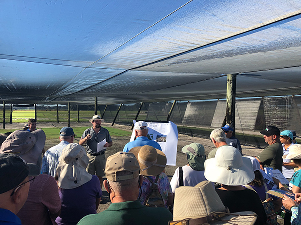 Man speaking to group about turfgrass under a shaded plot in a turf field