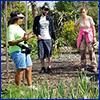 People standing in a vegetable garden