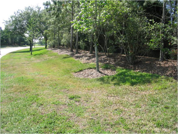 Lakewood Ranch roadside before makeover