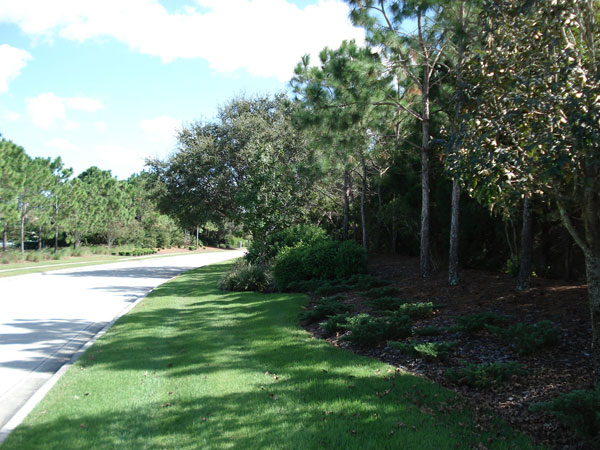Lakewood Ranch roadside a year later