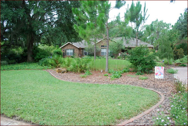 A closer look at Carol Smith's front yard - Photos Of A Florida-Friendly Landscape Makeover In Manatee County