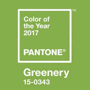 Pantone's 2017 Color of the Year is Greenery, 15-0343, a light green with a hint of yellow