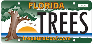 A sample image of the Trees Are Cool license plate