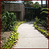 Pathway in therapy garden