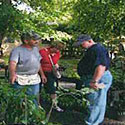 Marion County Master Gardeners