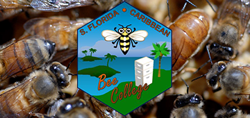 Bee College logo with bees in background