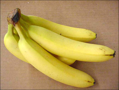 Squishy Purple Banana 25 : Plant ID: Fruits & Nuts: Banana - Florida Master Gardener Program - University of Florida ...