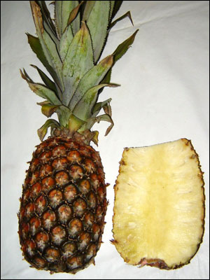 Pineapple fruit, split open