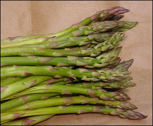 Edible spears of asparagus