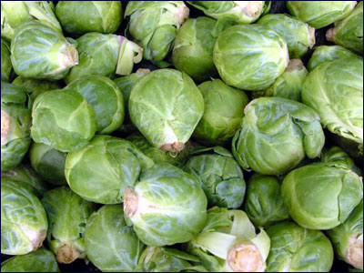 Edible heads of brussels sprouts