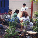 Mendenhall students in their garden